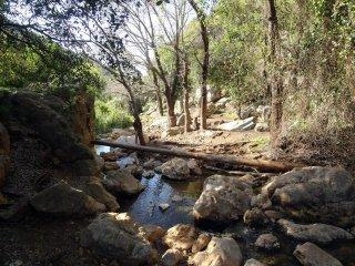 Национальный парк - Нахаль (ручей) Цальмон