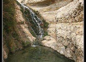 Национальный парк и заповедник - Эйн Геди